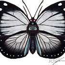 Butterfly by Djjacksonart