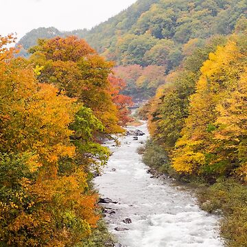 Japan River Autumn view by louise