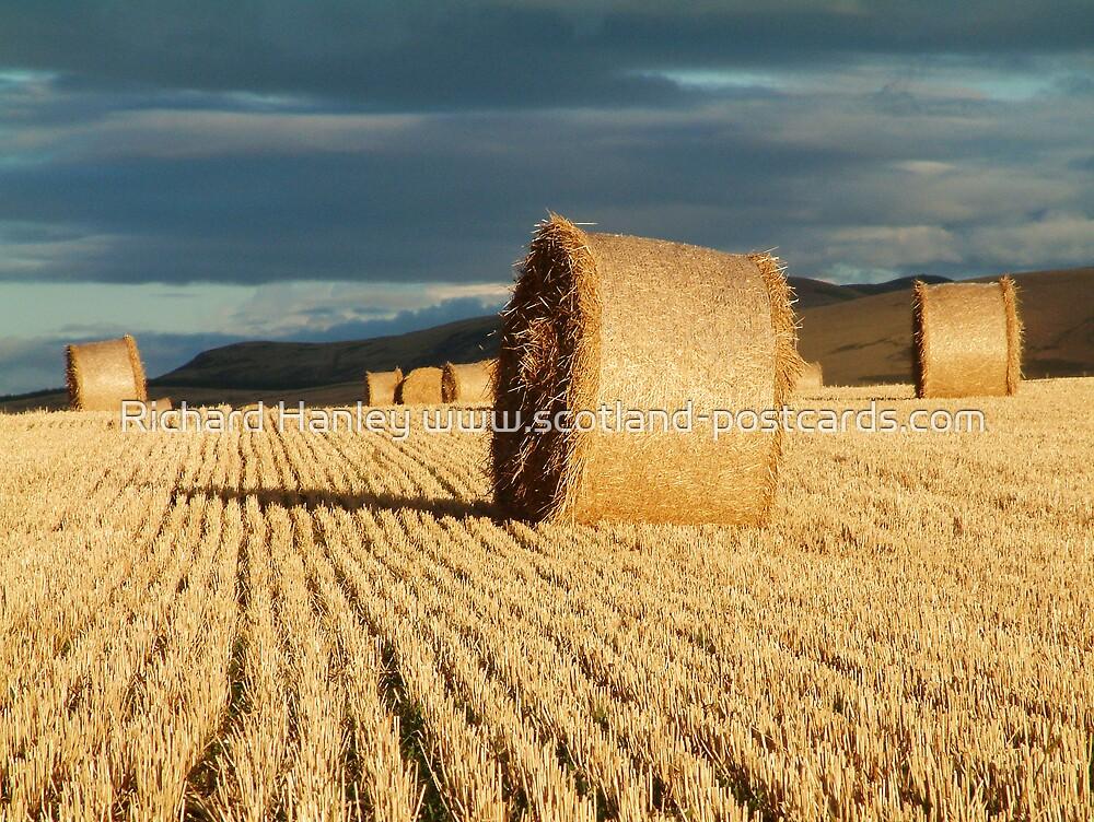 Haystacks by Richard Hanley www.scotland-postcards.com