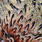 Pheasant's Feathers by Alexandra Lavizzari