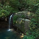 Crystal Falls by Tyhe Reading
