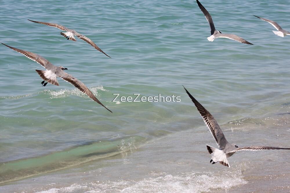 Fly Away by ZeeZeeshots