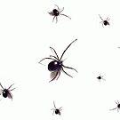 Black-Widows by shellyb