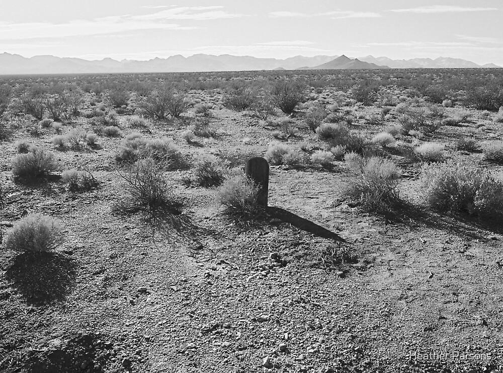 Eternal Desolation by Heather Parsons