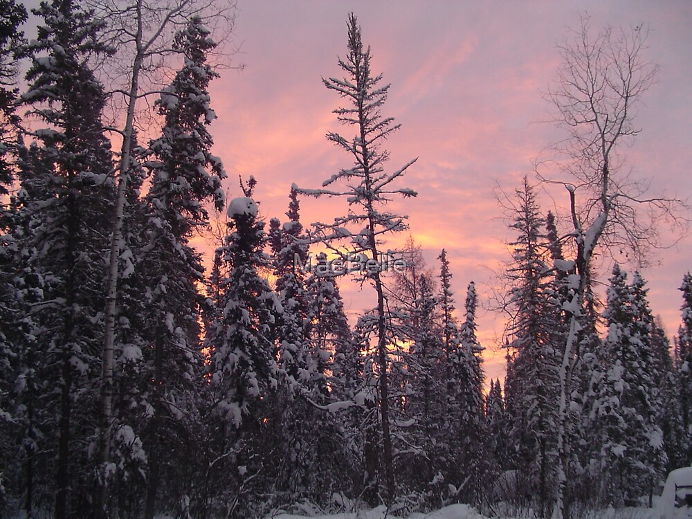 Winter Sunrise by MaeBelle