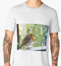 Robin on a fence Men's Premium T-Shirt