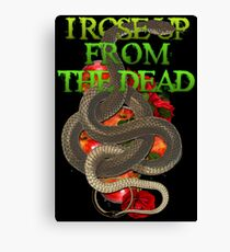 I rose up from the dead/ The resurrection  Canvas Print