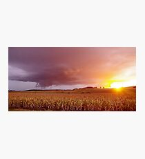 Fields of storms and sunshine Photographic Print