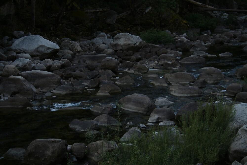 Merced river Yosemite NP by Ilan Cohen