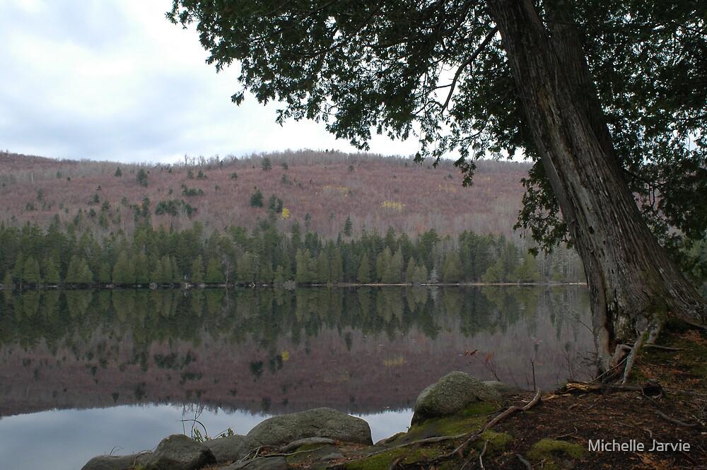 Still Reflection by Michelle Jarvie