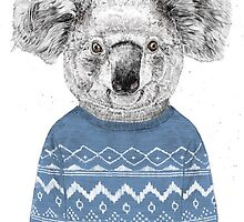 Winter koala by soltib