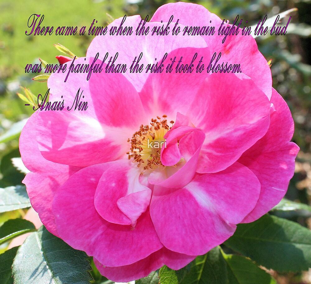 The Rose by kari