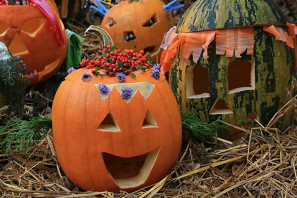 halloween by dagmar luhring