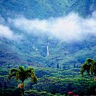 Manoa Valley Mist by kevin smith  skystudiohawaii