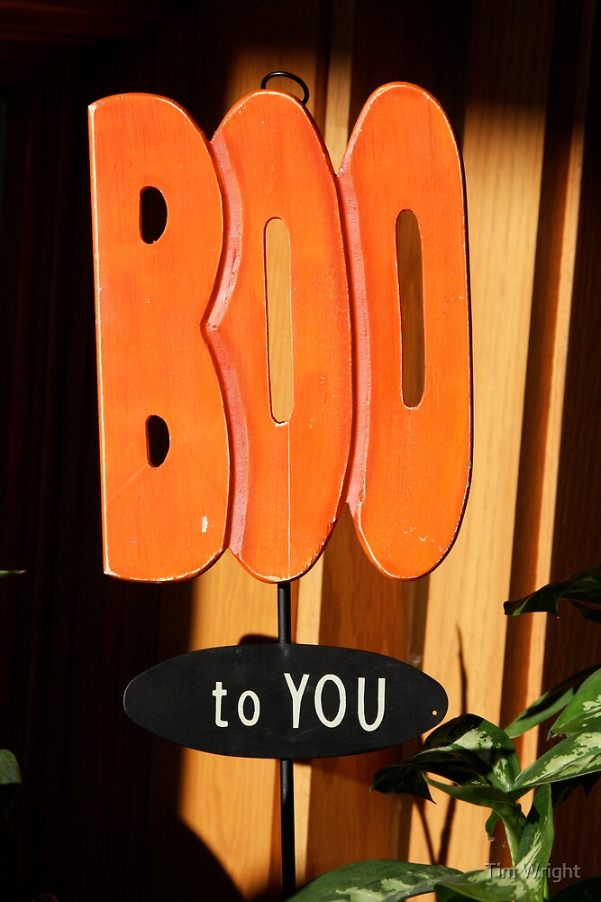 Boo To You by Tim Wright