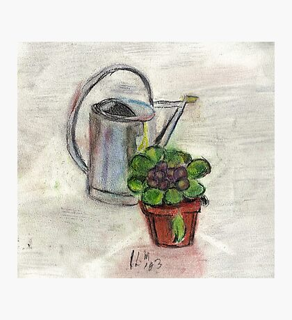 Watering Can With Flowerpot Photographic Print