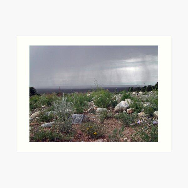 Storm in the Great Basin Desert Art Print