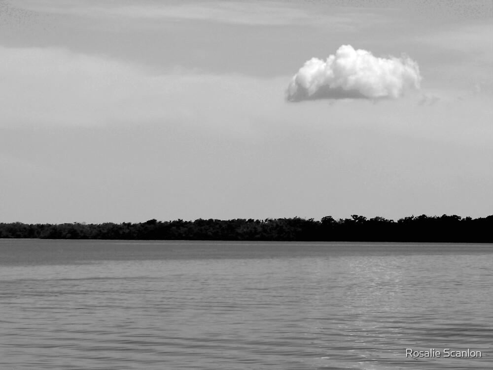 A Single Cloud Black and White by Rosalie Scanlon