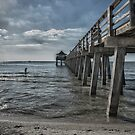 Naples Pier and Beach Fun by designingjudy