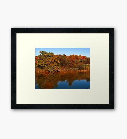 Autumn Pond 1 Framed Print