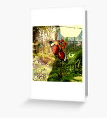 EYE CONTACT WITH NATURE Greeting Card