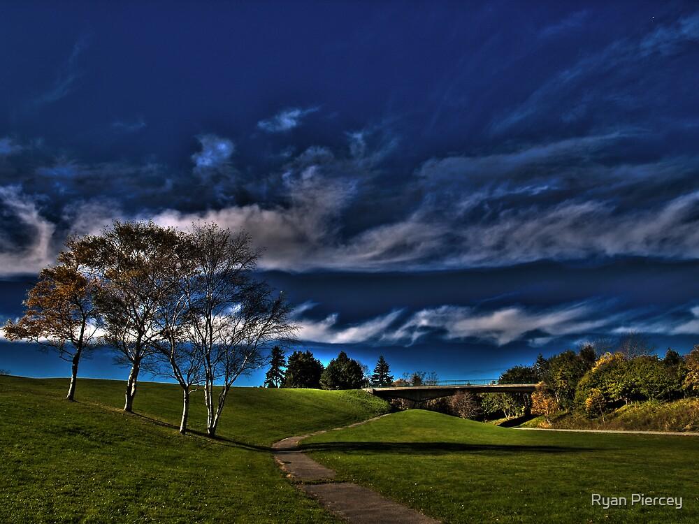 Vibrant Autumn by Ryan Piercey