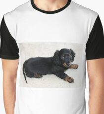 dachshund longhaired puppy Graphic T-Shirt