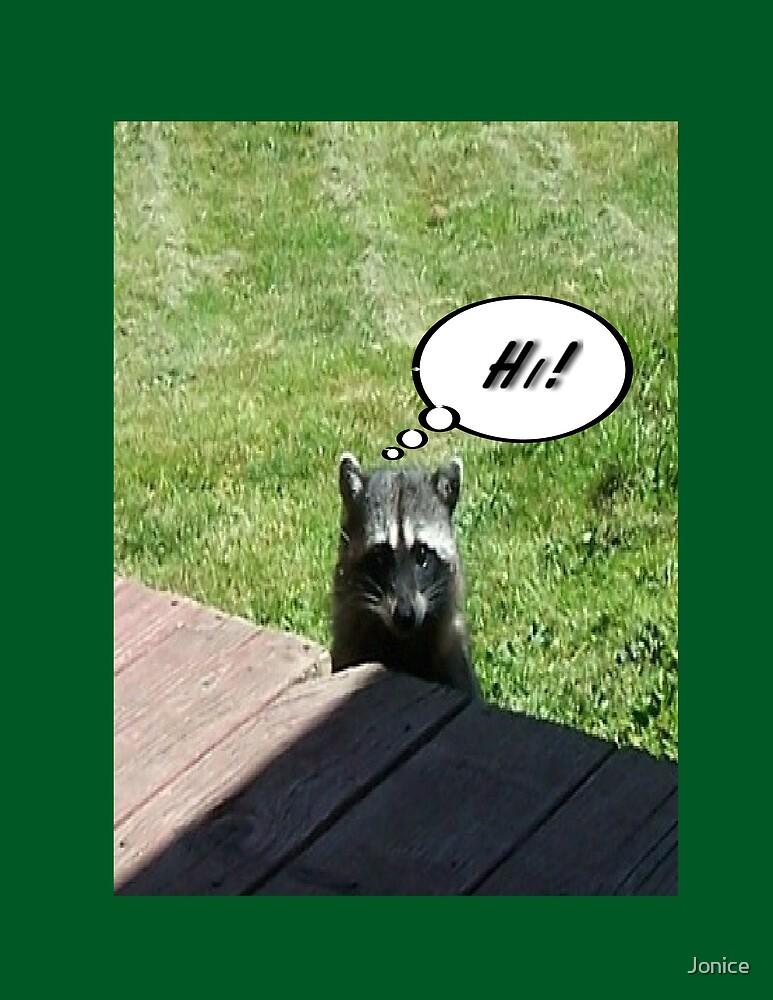 Raccoon Hi! by Jonice