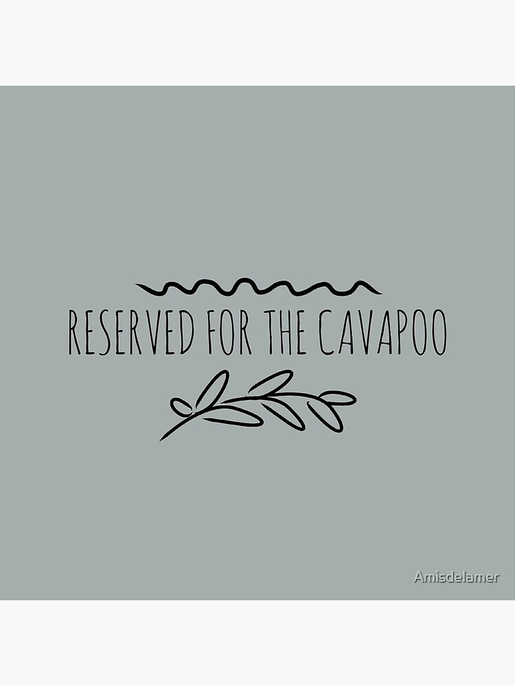 Reserved for the cavapoo by Amisdelamer