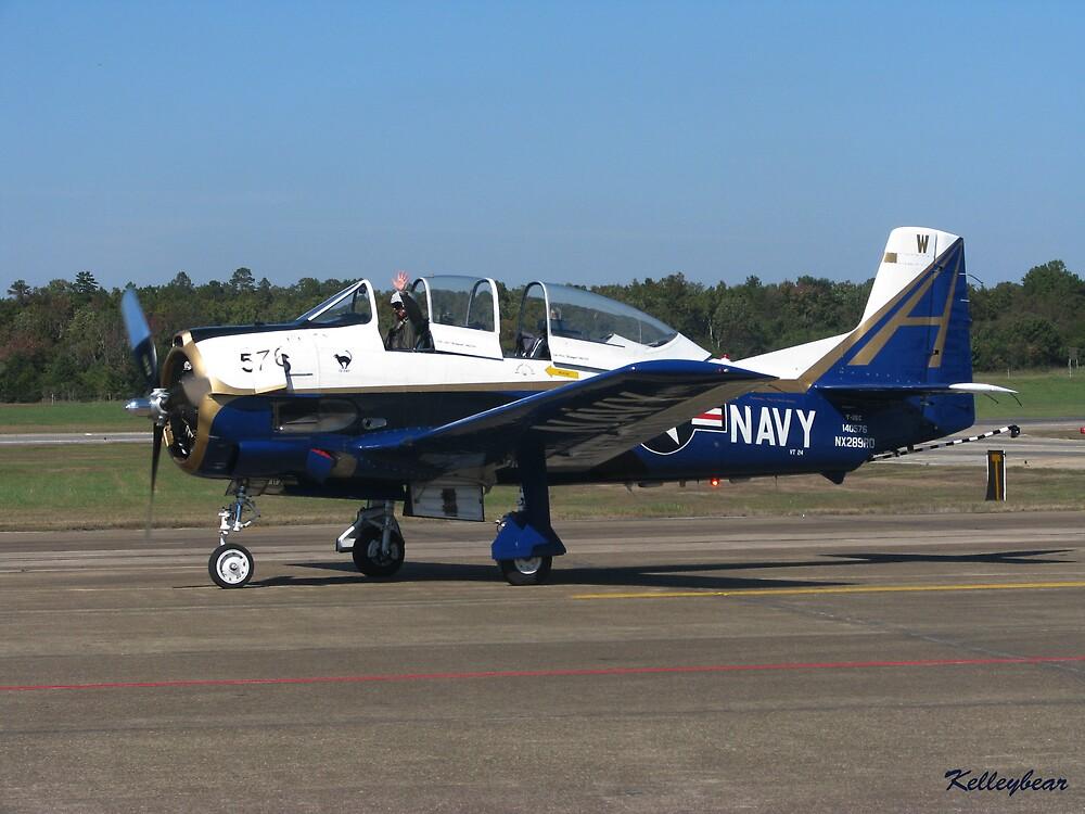 A Navy Plane  by kelleybear