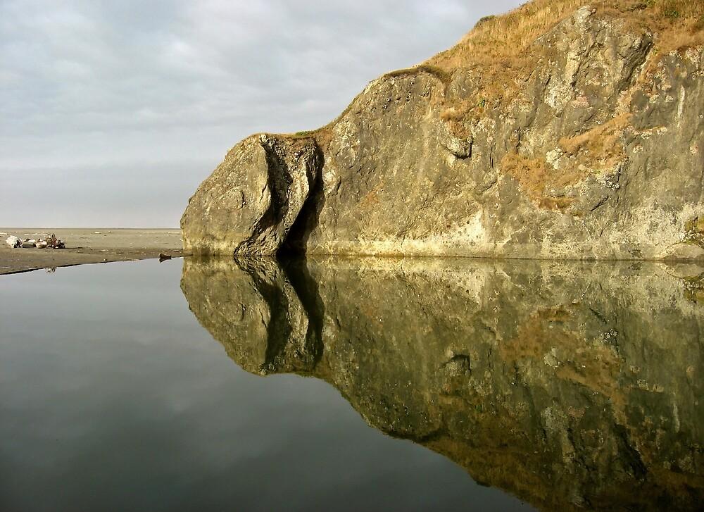 Tidepool Reflection by Corey Bigler