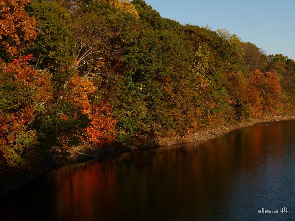 Autumn lights  by ellestar44