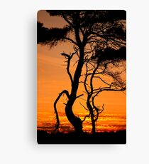 Dance me to the end of love Canvas Print
