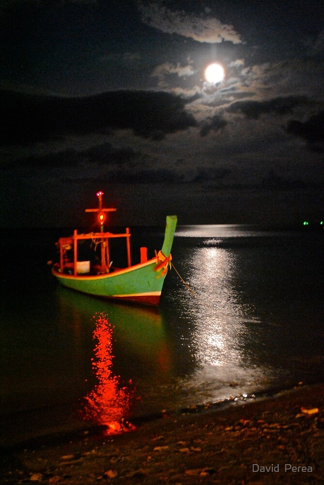 Moonlight on the skin of the water by David  Perea