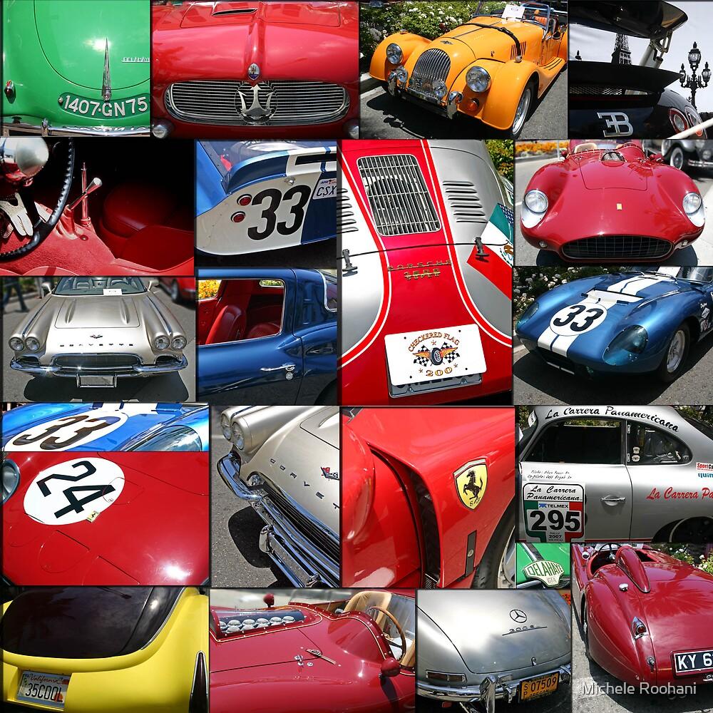 Race Cars by Michele Roohani