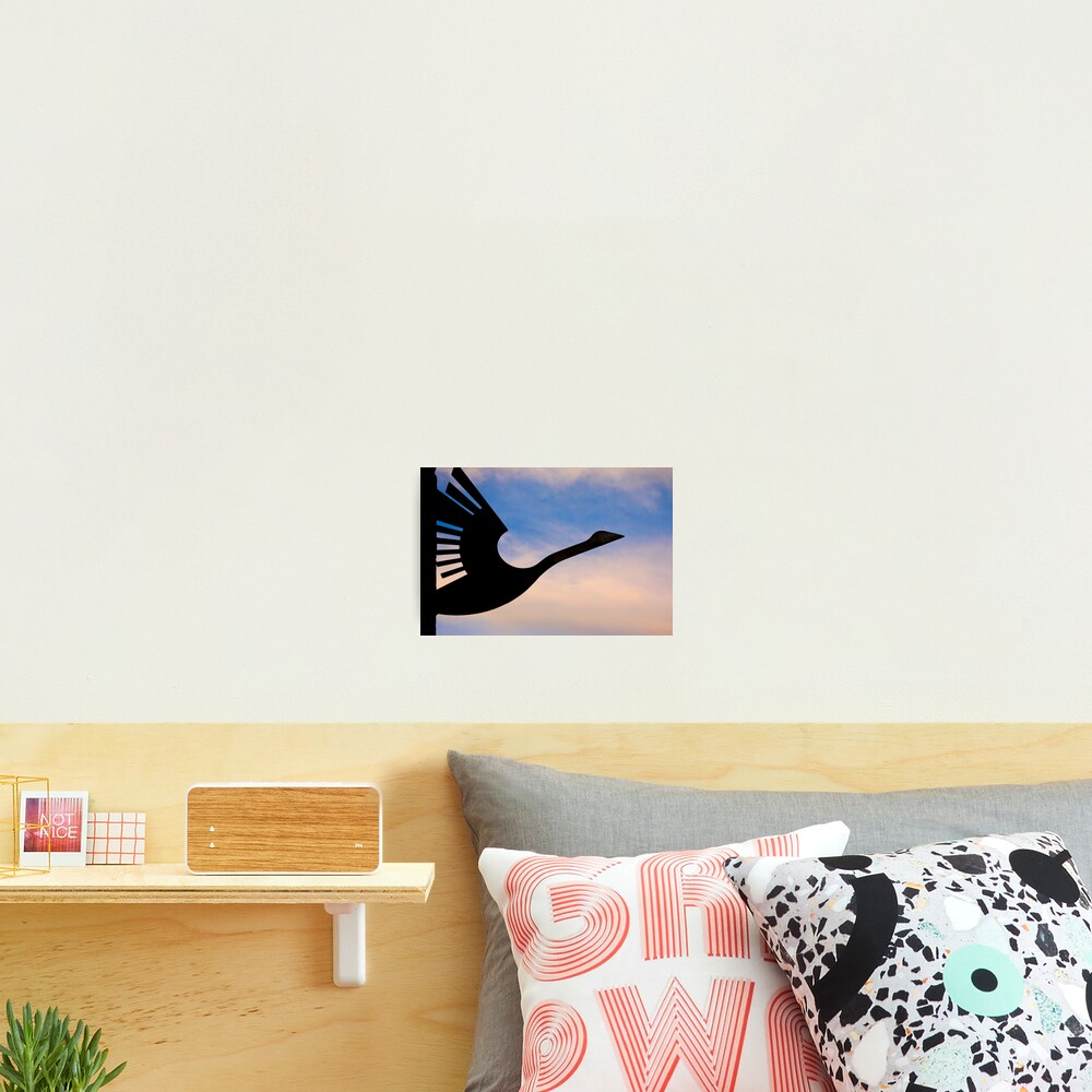 Wanting to take flight Photographic Print