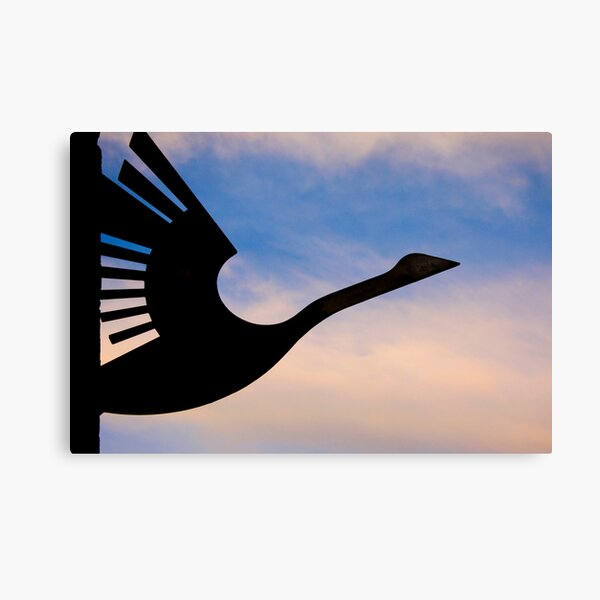 Wanting to take flight Canvas Print
