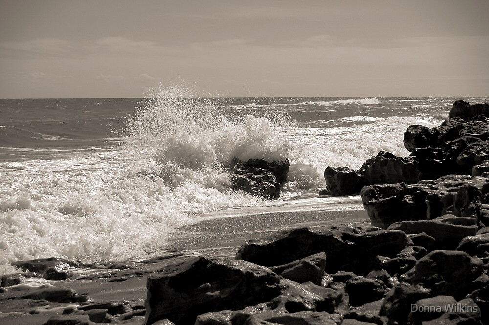 Wave Stop - BW by Donna Wilkins
