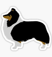 Shetland Sheepdog (tri) Sticker