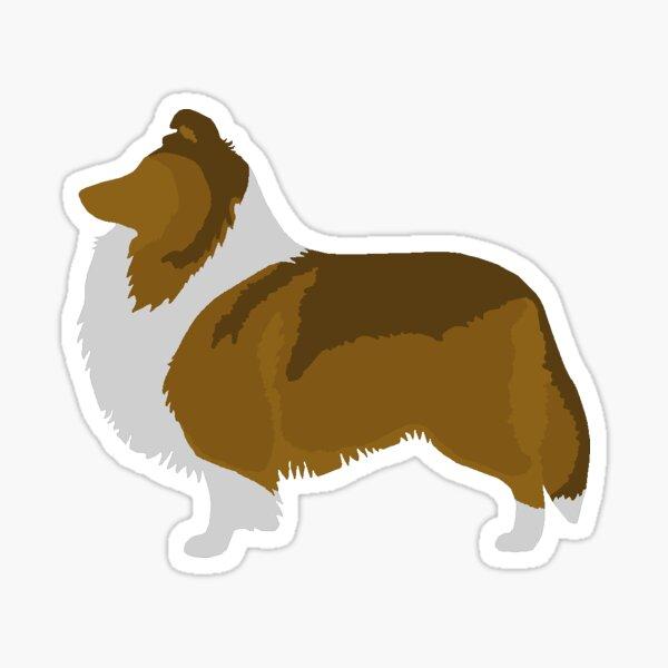 Shetland Sheepdog (sable) Sticker