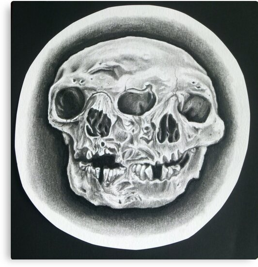 Oddity Skull Sketch Tattoo Flash by JABK
