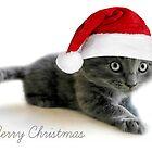 Oobies First Christmas by Ladymoose
