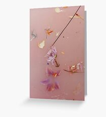 Harry Styles - pink flowers Greeting Card