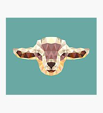 Goat - Abstract Shapes Photographic Print