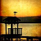 Coastal Dreams by Jonicool