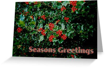 'Seasons Greetings' 1 Card by haymelter