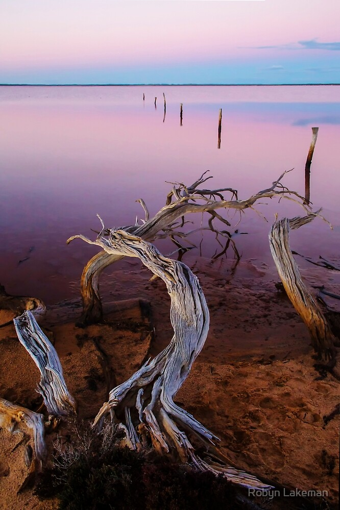 Lake Tyrrell by Robyn Lakeman