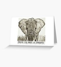 This is not a trophy - Save the Elephants Greeting Card