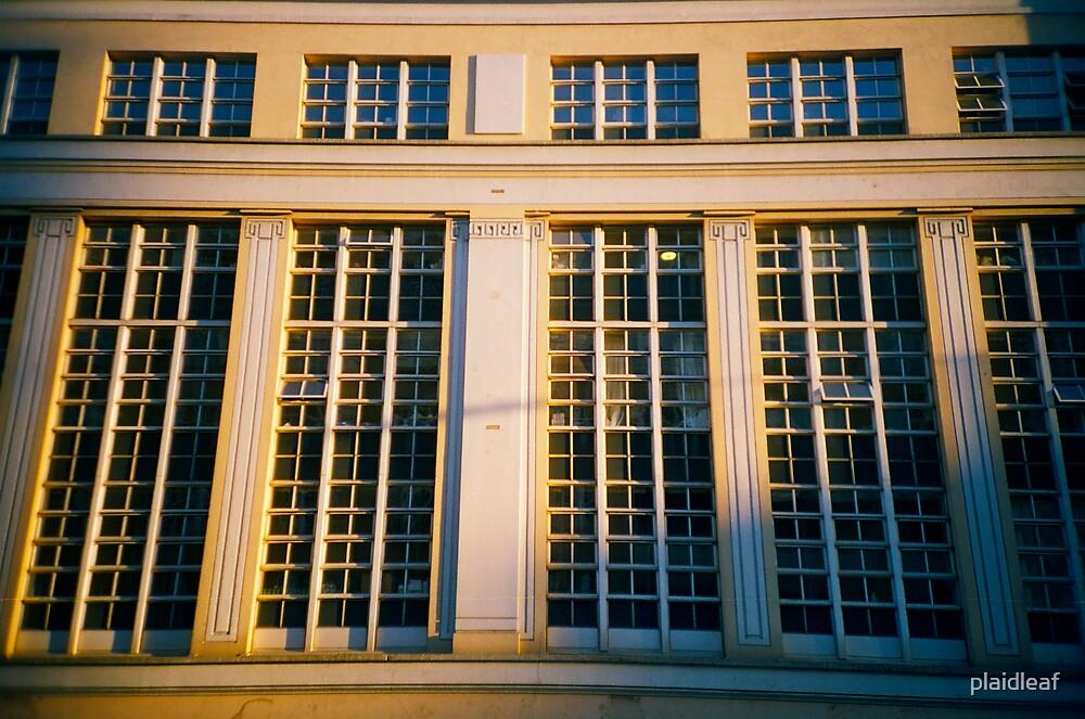 Windows by plaidleaf