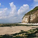 South Landing - Flamborough Head. by Trevor Kersley